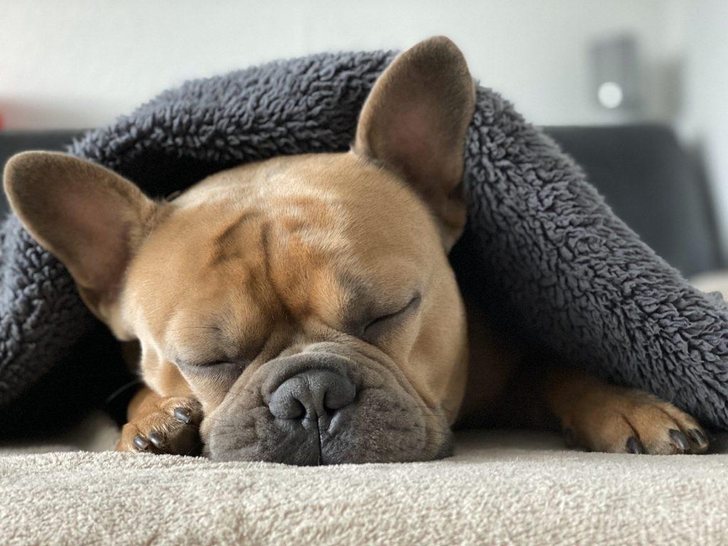 อาการนอนไม่หลับแบบง่ายๆ
